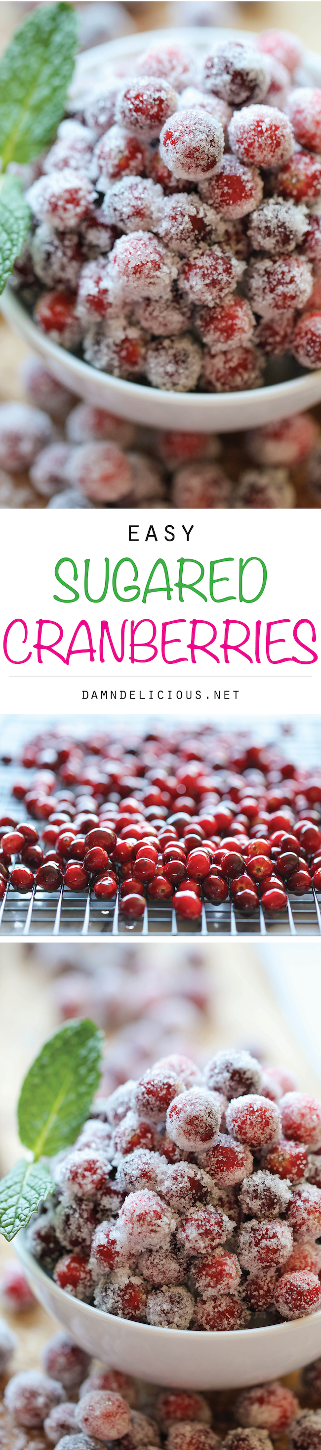 Sugared Cranberries - Incredibly simple and easy 2-ingredient sparkling cranberries. Perfect for holiday snacking or dressing up desserts!
