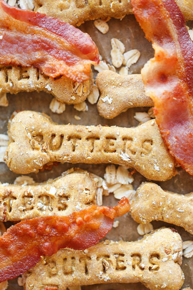 Bacon Dog Treats - These dog treats are filled with bacon goodness and nutritious oats, and your pup is sure to go crazy for these!